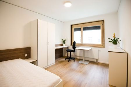 3-Zimmer-Apartment (1).jpg